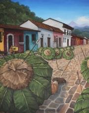 ill-Amazonia
